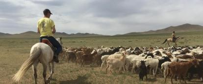 Culture and Community Volunteers live and work with Nomads in Mongolia whilst riding horses to herd cattle.